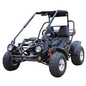 Full size go kart 150cc air cooled TrailMaster 150cc XRS Dune Buggy