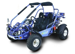 Full size Bv Powersports go kart 300cc water cooled