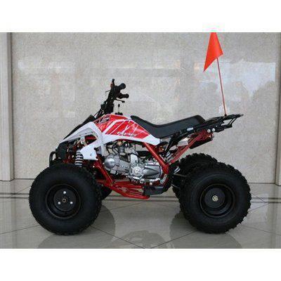 RPS High End JET 8 (EGL MOTOR) 125cc ATV