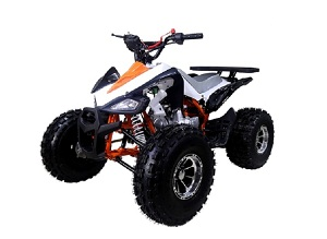 atv 125cc ata-125 NEW CHEETAH