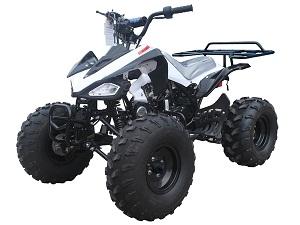TAOTAO CHEETAH ATV