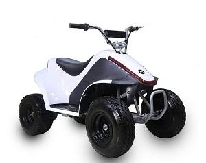 TaoTao ROVER500 500 Watt, Brush Electric Motor