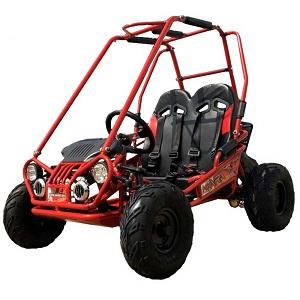 TrailMaster Mini XRX+ A Upgraded Go Kart