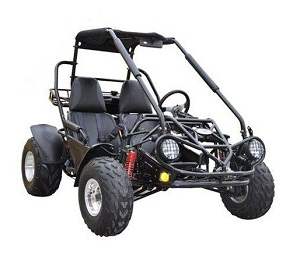 Full size go kart 150cc air cooled TrailMaster 150cc XRS Dune Buggy