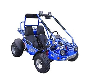 Full size go kart 150cc air cooled TrailMaster 150cc XRX GTS GoKart