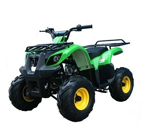 taotao ata-125d kids atv with reverse