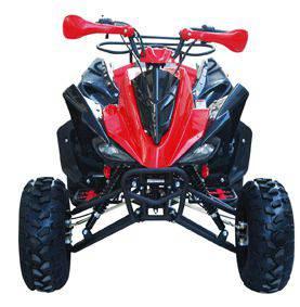 TaoTao ATV 150G
