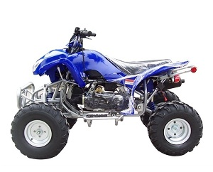 new atv 150 cc blizzard auto with reverse