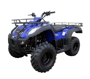 new atv 250 cc canyon auto with reverse