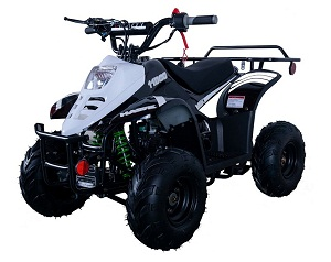 Vitacci HAWK 6 110cc ATV