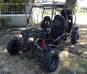 Dongfang 170cc 4 Seater Go Kart with Automatic Transmission w/Reverse