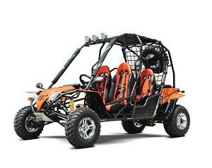 Dongfang 200 DF200GHA Go Kart Horizontal Type