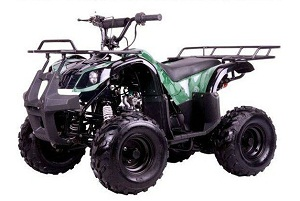 "kodiak-hd 110cc youth atv - big 16"" tires"