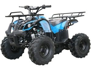 Assembled-Kodiak-hd 125cc mid size atv with reverse