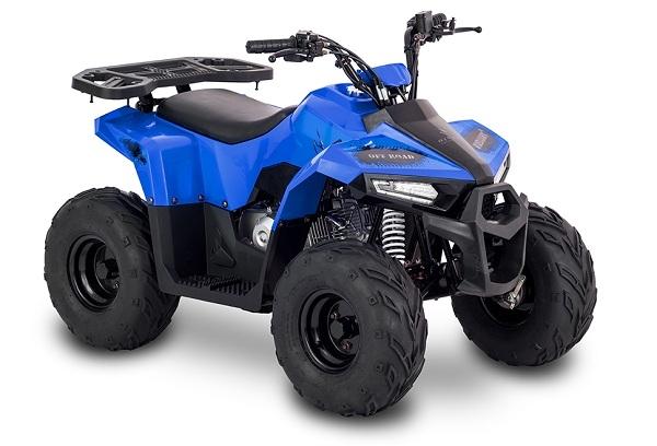 Rival Motor MudHawk 6
