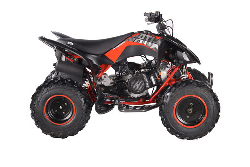 VITACCI-PENTORA-200-EFI-ATV