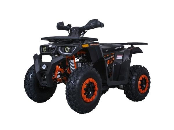 TAOTAO RAPTOR 200 ATV