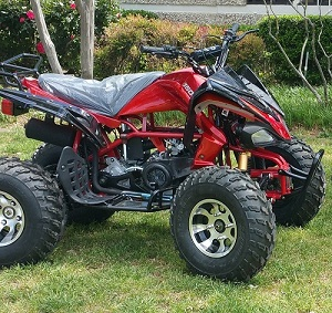 RPS ATV 150cc, Single, Four Stroke, Air Cooled, Full Size Automatic With Reverse