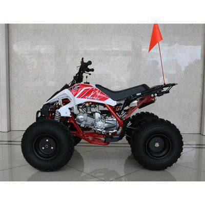 RPS High End JET 8 (EGL MOTOR) 125cc ATV
