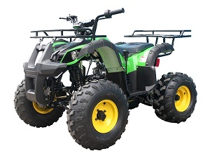 taotao ata-135d Bigger kids atv with Reverse