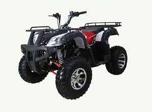 TaoTao BULL 200 169CC, Air Cooled, 4-Stroke, 1-Cylinder, Automatic