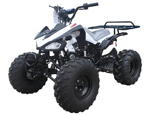 TAOTAO CHEETAH ATV
