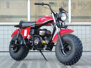 TRAILMASTER MB200 SERIES 2 MINI BIKE