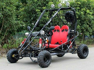 Vitacci Mini Jaguar DF125GKB 125CC Go kart, Automatic with Reverse, Electric Start