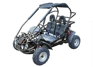 mid size go kart with 6.5 hp engine WITH REVERSE